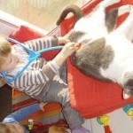 """bon parfois MISTIGRI le chat, dit MISTOU,  se prete au jeu, mais bon c'est quand meme pas trop son truc ! mais bon c'est une """"bonne pate"""" ce chat quand ça va plus il se sauve..."""
