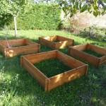 toujours dans le concept  montessori, les enfants disposeront chacun d'un ou plusieurs carrés dans les carrés potagers,  ils auront la responsabilité d'y faire pousser ce qu'ils veulent... fleurs, plantes ...éponges ?! ...